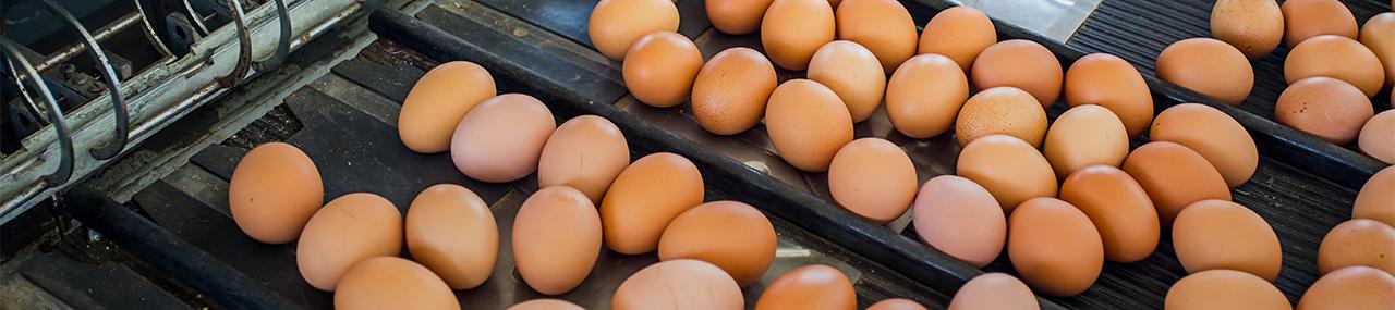 Huevos Copita